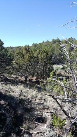 172 E Hualpai, Williams, AZ 86046