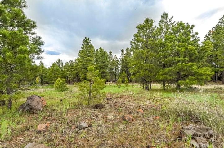 2691 Andrew Douglass, Flagstaff, AZ 86005