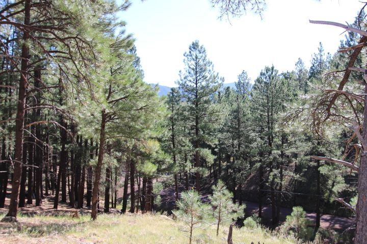 5216 Hidden Hollow Road, Flagstaff, AZ 86001