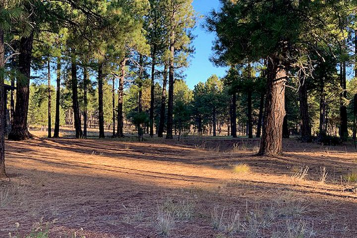 4480 W Braided Rein, Flagstaff, AZ 86005