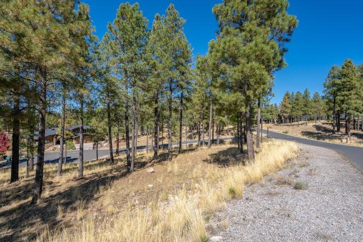 2496 E Del Rae Drive, Flagstaff, AZ 86005