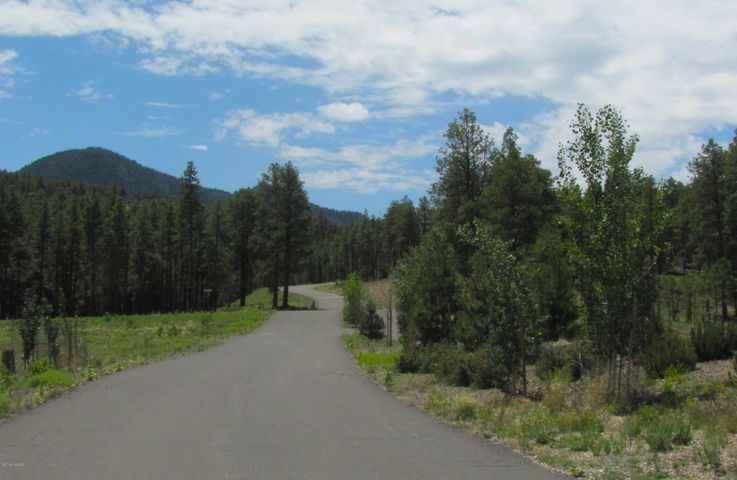 Gorgeous .40 Acre Lot in Escalante @ William Mountain. Great Place to Build Your Summer Getaway.