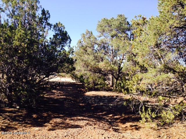 334 E Hidden Canyon Road, Williams, AZ 86046