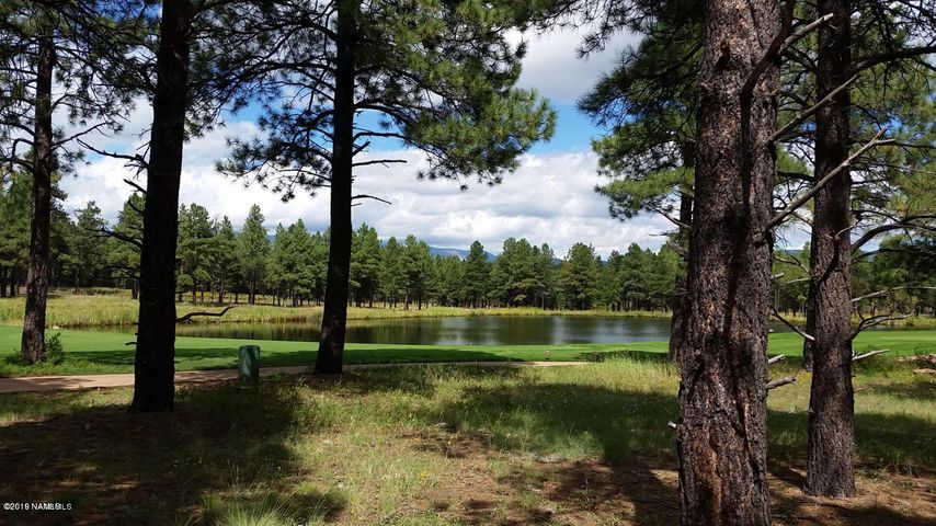 4640 W Braided Rein, Flagstaff, AZ 86005