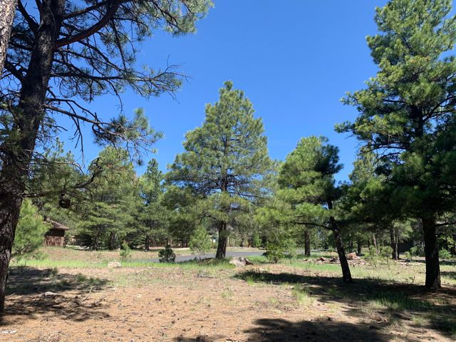 3242 Dick Hevly, Flagstaff, AZ 86005
