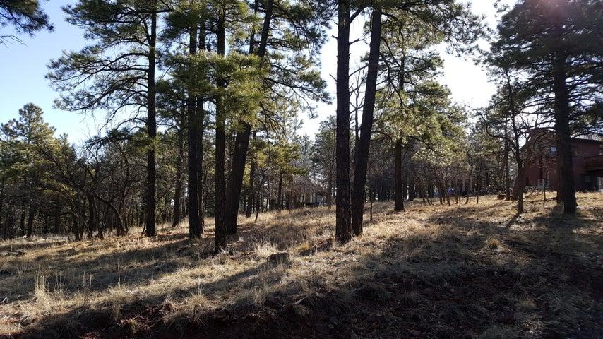 20225004a Wilderness Trl, Williams, AZ 86046