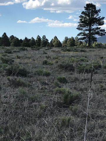 10981 E Horse Hill Trail, Parks, AZ 86018