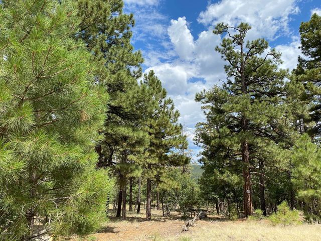 1799 Pine Ridge Drive, Williams, AZ 86046