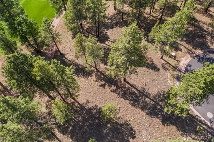 3141 S Solitaires Canyon Drive, Flagstaff, AZ 86005