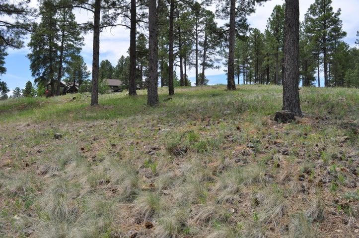 1615 E Morgan Run Drive, Flagstaff, AZ 86005