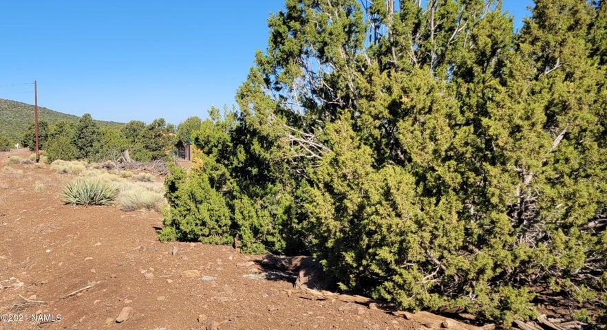 2145 E Clear Point Way, Williams, AZ 86046