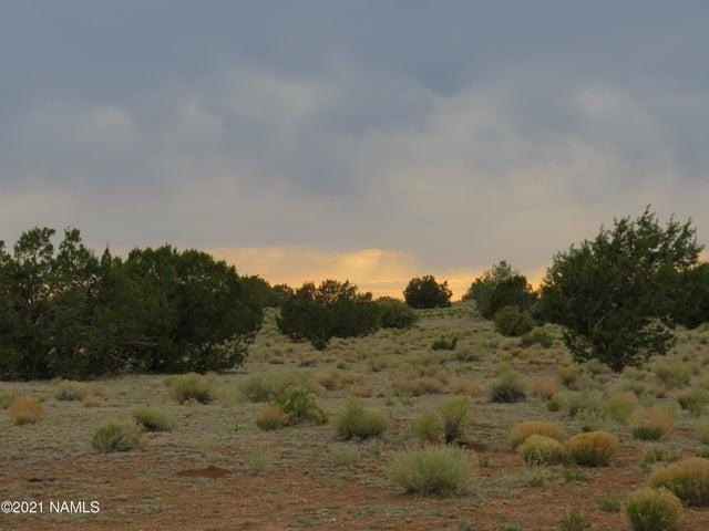 9260 Mineral Wells Road, Williams, AZ 86046