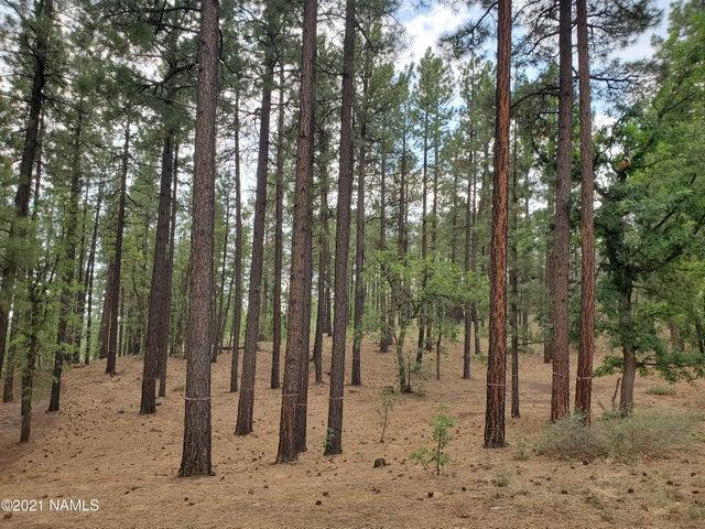 4735 S Flagstaff Ranch Road, 115, Flagstaff, AZ 86005