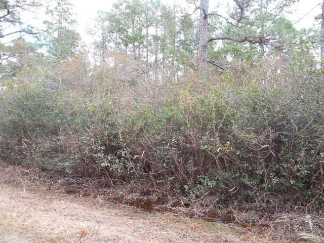 278  Persimmon Road Southport, NC 28461