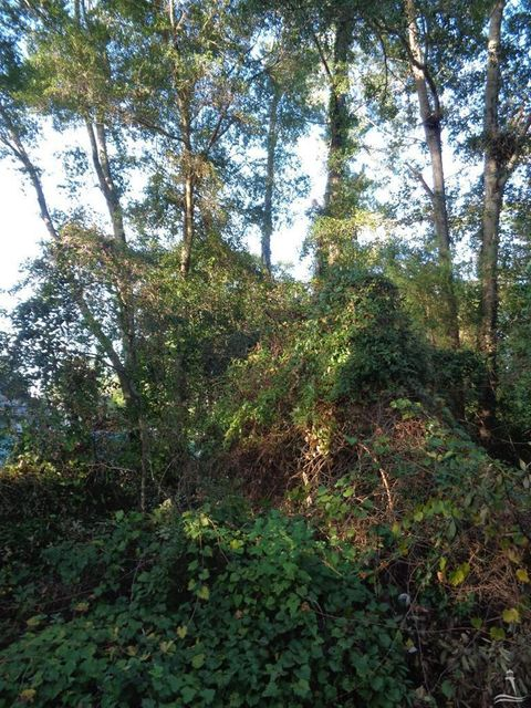 Steeple View Way Bolivia, NC 28422