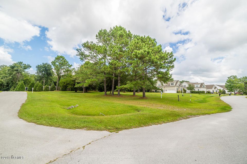 134 White Heron Lane, Swansboro, NC, 28584 | MLS #100025310