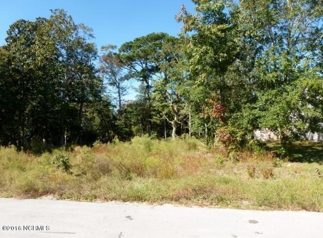 116 Elis Landing Lane, Newport, NC, 28570 | MLS #100032140