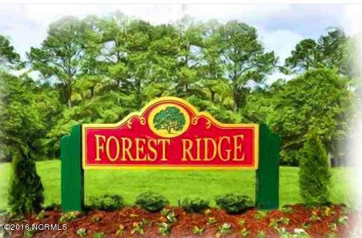 142 Forest Ridge Trail, Stella, NC, 28582 | MLS #100037189