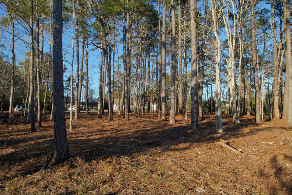 110 Ashley Lane, Beaufort, NC, 28516 | MLS #100046911