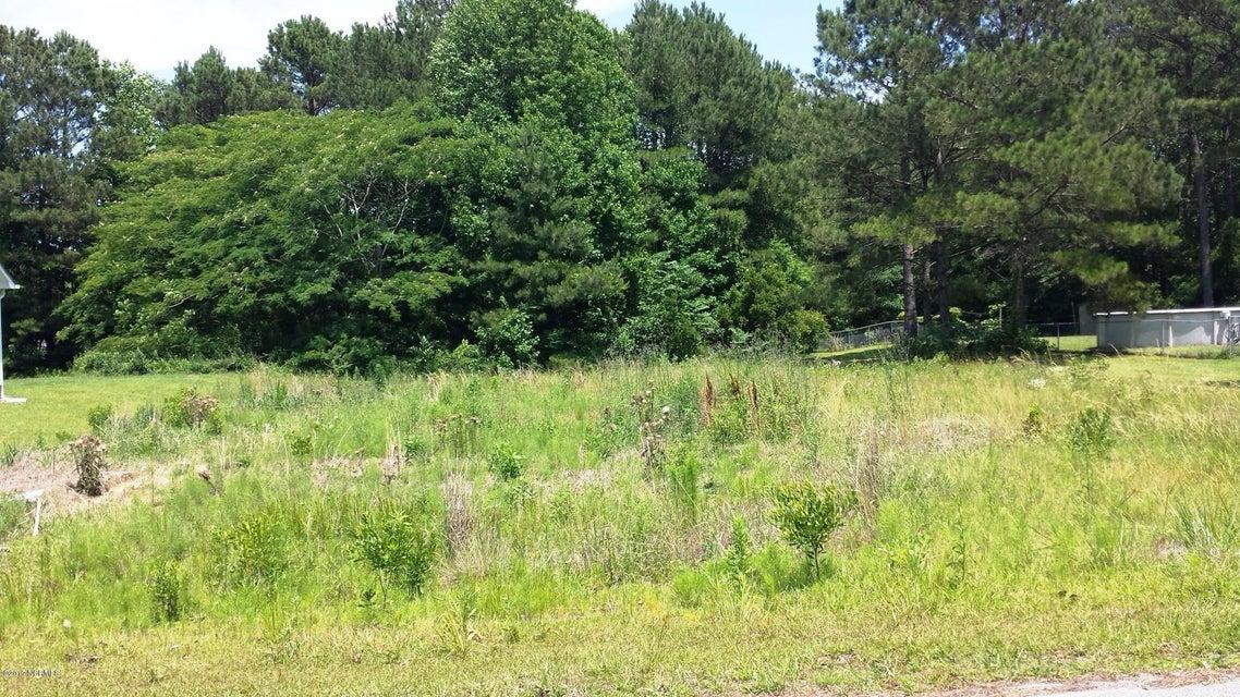 102 Pine Needle Drive, Hubert, NC, 28539 | MLS #100071428