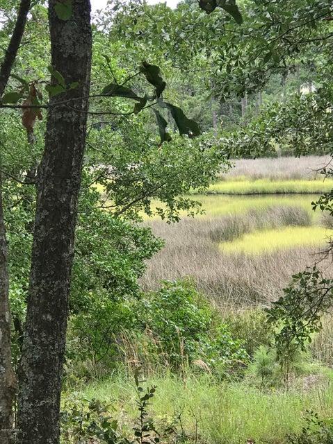 517 Bluff View Lane, Swansboro, NC, 28584 | MLS #100075105