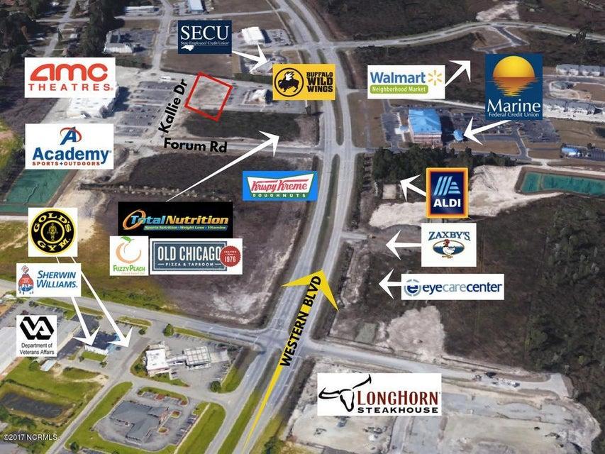 1013 Kalli Drive, Jacksonville, NC, 28546 | MLS #100088020
