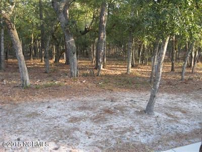 beautiful LARGE 100 x210 FEET homesite ( almost 1/2 acre)overed in lovely hardwood trees, wild Dogwood trees and Large Live Oak trees. The gated community of Seascape is only minutes to Holden Beach and shopping. build home here and ytour custom home will be within walking distance of wonderful community amenities, big marina, private boat ramp and dockmaster office, exercise room, card room, indoor pool, outdoor pool, sauna, tennis courts, AND  private Beach club on Holden Beach 5 minutes from property