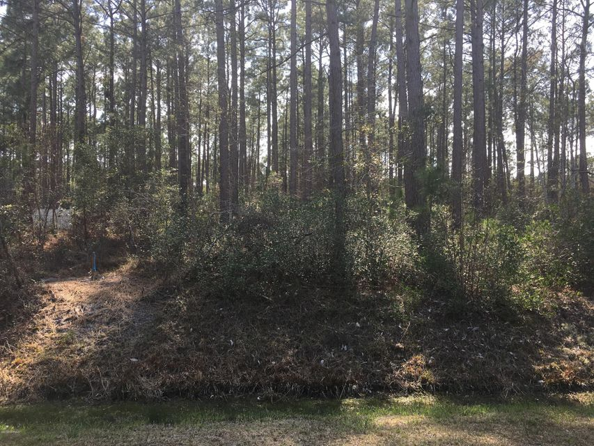 Beautiful large wooded building lot, Sewer lines being installed. County water in place. Close to beaches, golf courses, entertainment and shopping. Community has outdoor pool. Buyer pays $6,000 sewer assessment.