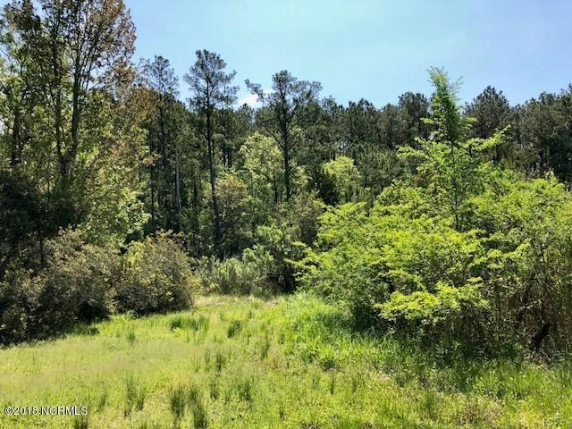 135 White Heron Lane, Swansboro, NC, 28584 | MLS #100113009