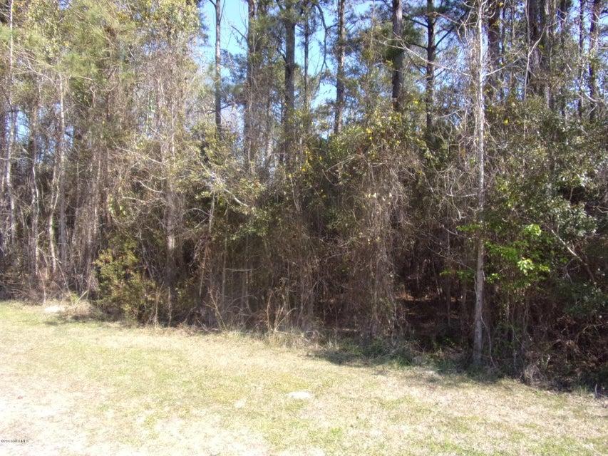 115 Cartuca Trail, Beaufort, NC, 28516   MLS #100117004