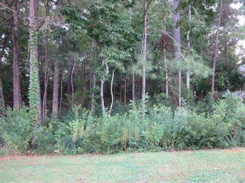 104 Bonita Lane, Swansboro, NC, 28584 | MLS #100117147