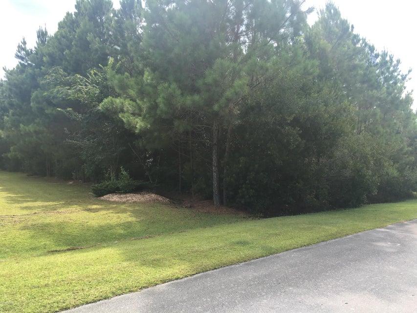 102 Blue Jay Way, Stella, NC, 28582 | MLS #100125780