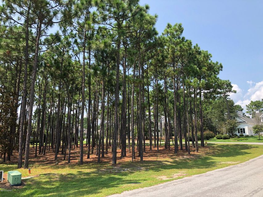2703 Moss Creek Court Southport, NC 28461