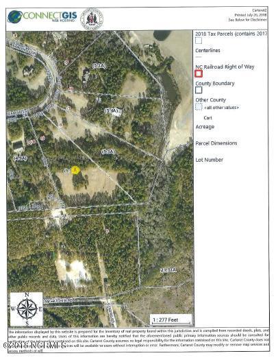 297 Sandhills Drive, Newport, NC, 28570   MLS #100131614