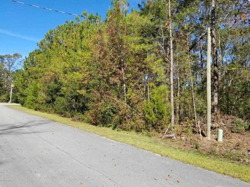 320 Red Oak Drive, Stella, NC, 28582 | MLS #100139726