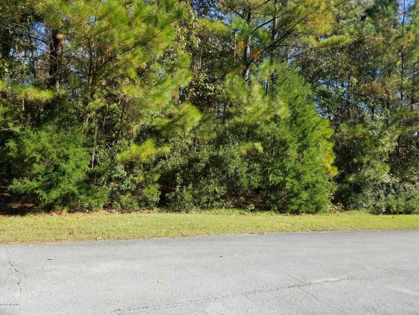 203 White Oak Bluff Road, Stella, NC, 28582 | MLS #100038624