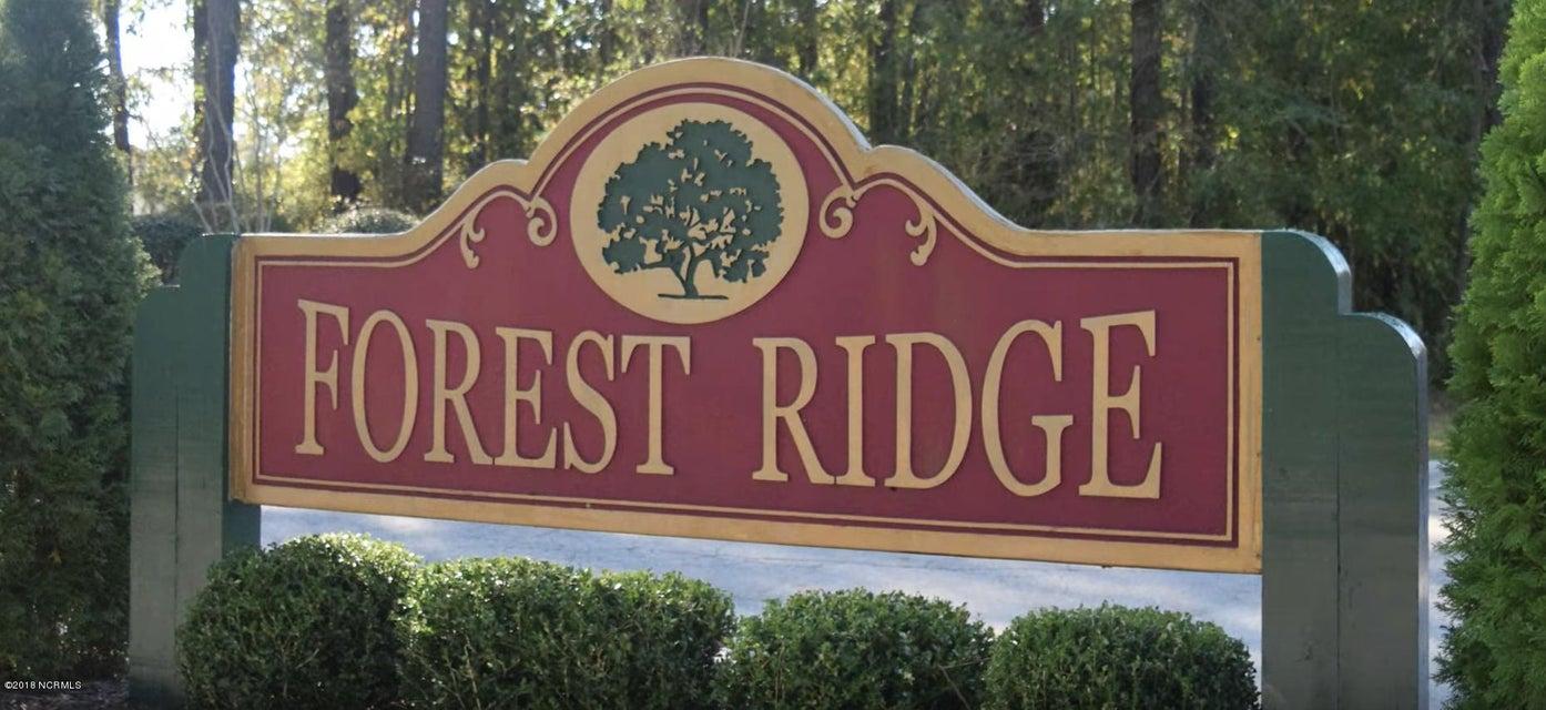 144 Forest Ridge Trail, Stella, NC, 28582   MLS #100143520