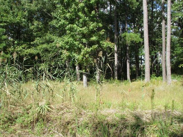View from Bateman's Creek Rd