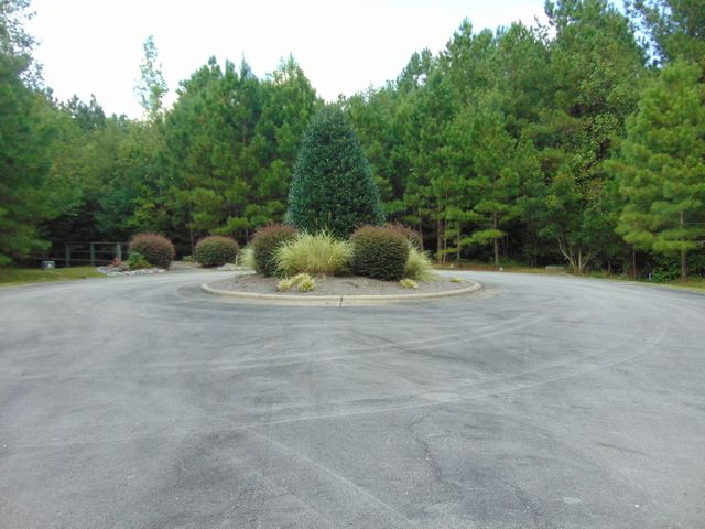 48 Eagle Nest Trail, Blounts Creek, NC 27814