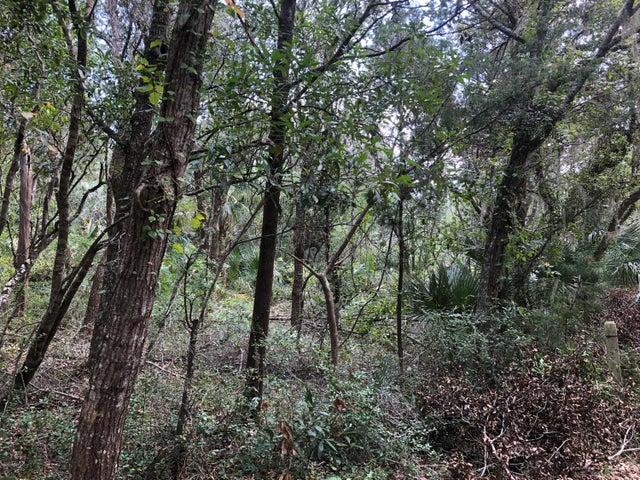 38 Dowitcher Trail, Bald Head Island, NC 28461