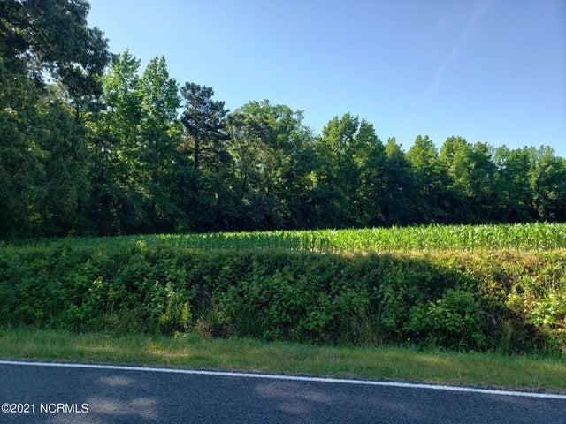 7.67+/- Ac Rehobeth Church Road, Clarkton, NC 28433