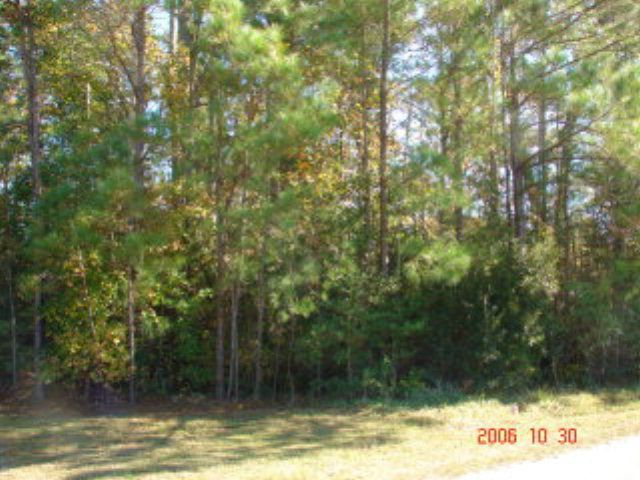 LARGE LOT OFF OLD FOLKSTONE ROAD