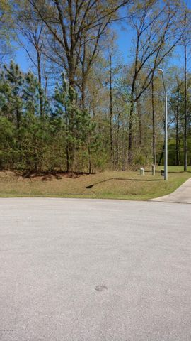 Great water front lot on New River. The depth of the water is perfect for canoe, kayaks or a small ''John Boat''. Property is located in the Cul-de-sac at the back of the neighborhood. It is .32 of an acre. Call today for more information.