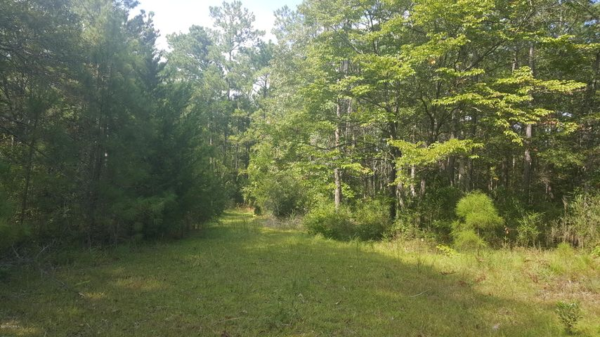 Private wooded homesite near Shallotte River and tucked back from the road, this homesite offers a unique location for your future home. Near Rivers Edge Golf Course, but not in an HOA so economical living. One of several lots in area not annexed into town. Sewer available if you apply for Annexation into Shallotte.
