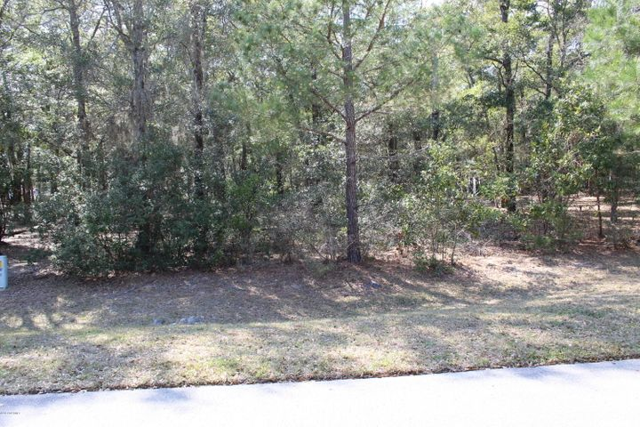 Beautiful lot in Oyster Harbour with access to ICW, boat launch,boat storagekayak launch to river, club house, pool,tennis courts,fitness center,pier in fresh water lake for fishing,minutesto Holden Beach.