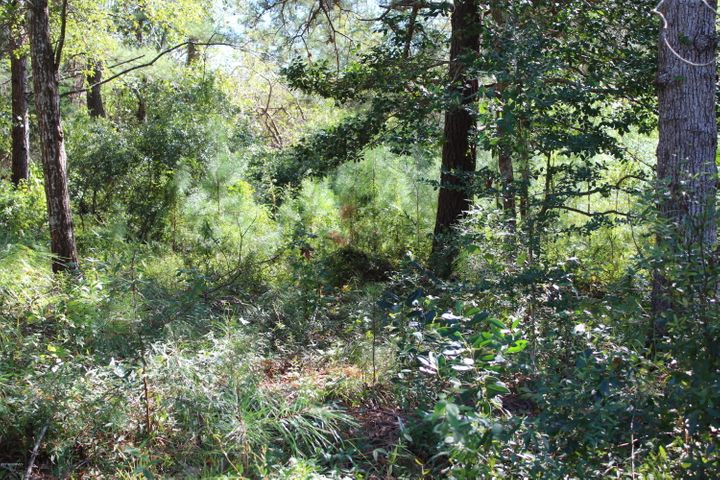 Nice .52 acres slopping lot, wooded. Build your permanent or vacation home in this quite community, close to beaches, shopping, restaurants and more.