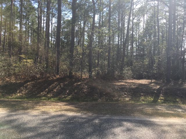 Lovely, wooded and large building lot for your new home. Public sewer and water available. Community has Outdoor pool, tennis courts, picnic area. You will love it here.