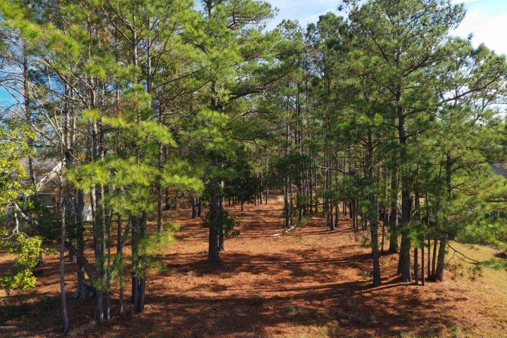 WOODED THREE QUARTERS OF AN ACRE IN ESTABLISHED COMMUNITY! LAND FINANCING OPTIONS AVAILABLE. Close to bases, beaches, shopping. Carteret County Schools! No town taxes. Come build your forever home or seasonal getaway nestled in mature pine trees!