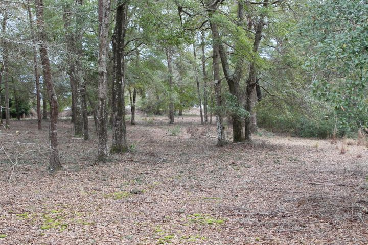 Beautiful lot to build your dream home. Oyster Harbour has what you need, private gated community with pool, tennis,bocce ball court,nature trails,boat launch on ICW, kayak launch on Shallotte river, fresh water lake for fishing.Great place to walk and bike