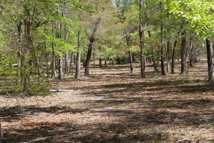 MOTIVATED SELLER: Beautiful lot on Clam Bake Ct. Build your dream home .Oyster Harbour has access to ICW,boat launch, boat/RV storage,kayak launch to river, club house,pool,tennis/pickleball courts, fitness center, pier in fresh water lake for fishing,great place to walk or bike. All within minutes to beaches, Wilmington and Myrtle Beach